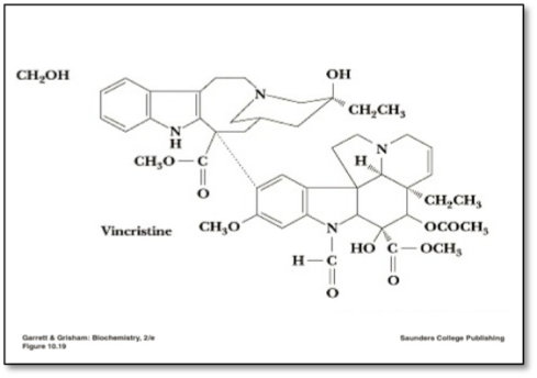 An expanded image of the Vincristine molecule.  There are no other molecules present.  This image is enlarged to fill the slide, however it is still an image and the construction of the molecule is not readable by a screen reader.  In this text box an instructor would be able to write a brief narrative of the image giving others a chance to understand what is essential.
