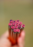 Eraser ends of wooden pencils personalized with peace symbols, flowers, signs and other decorations.