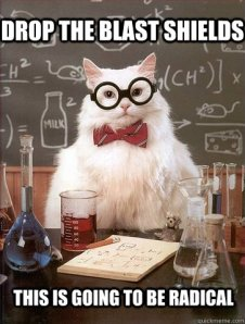 "From Chemistry Cat - ""Drop the blast shields.  This is going to be radical.""  Chemistry Cat meme at http://www.quickmeme.com/meme/35z7e1/"