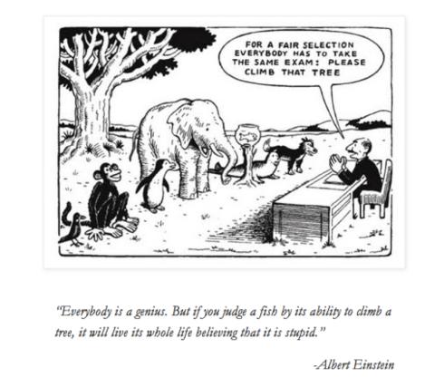 Einstein Exam Cartoon
