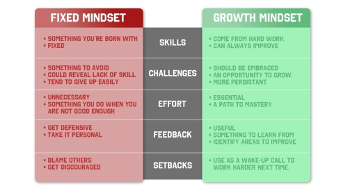 Based on Carol Dweck's mindset research.