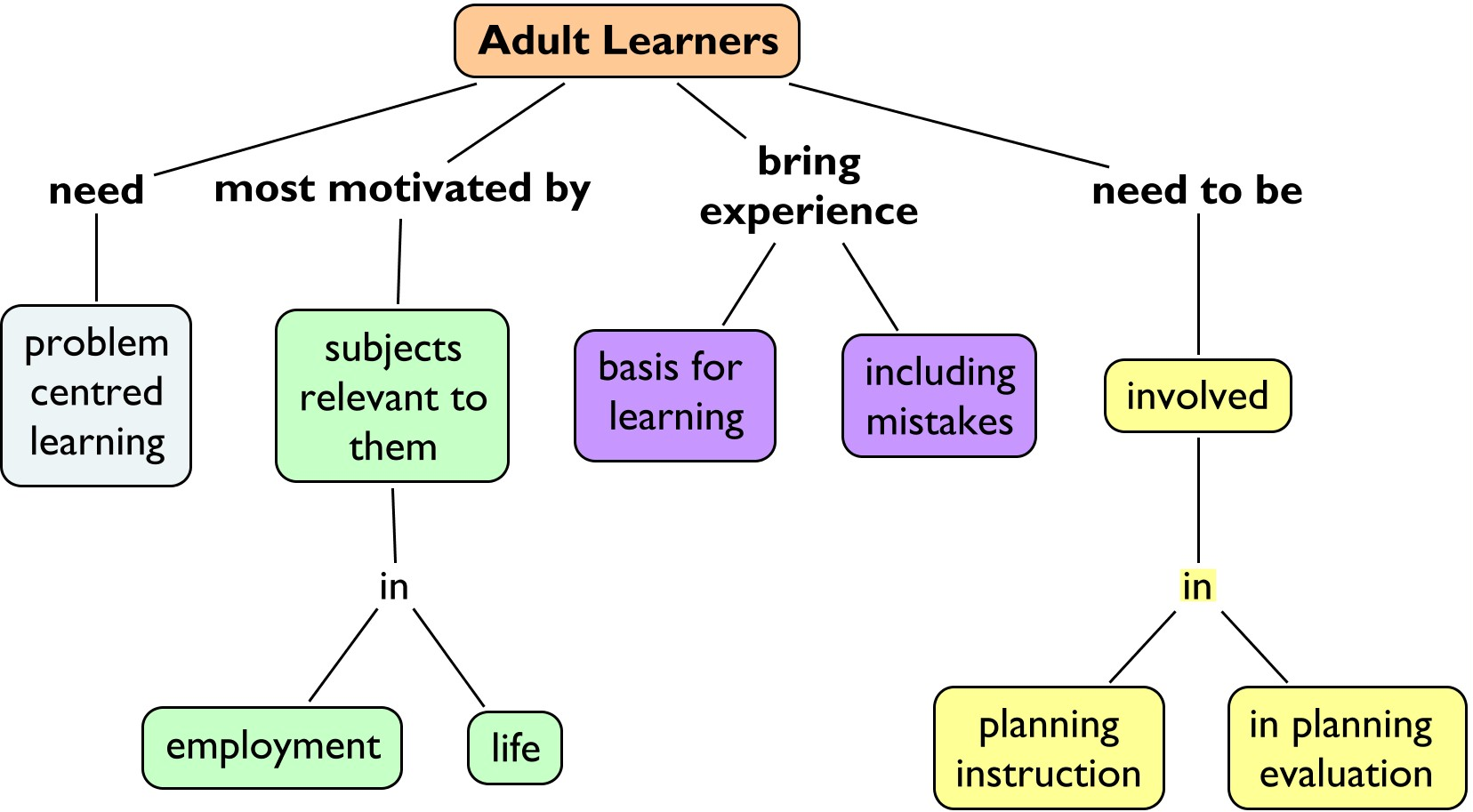 Learning charaterists of an adult learner
